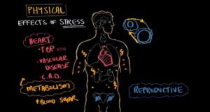 Physicals effects of stress
